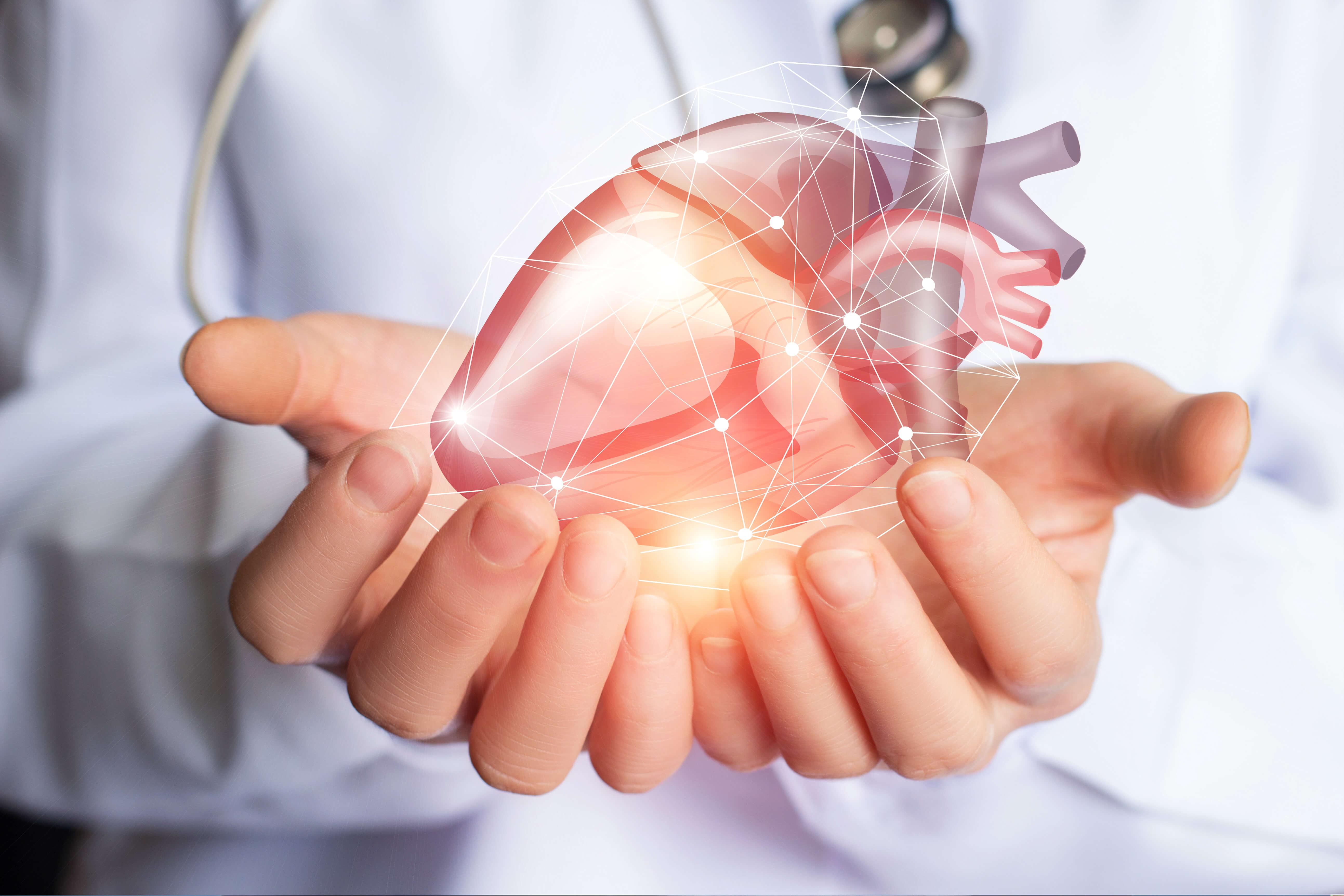 Cardiologie sur Bruxelles (Anderlecht, Ixelles et Jette)